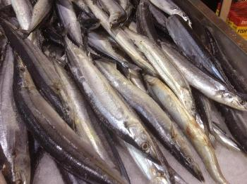 Oily fish: Pacific saury (Cololabis saira) for sale, photo by Eric Grafman / CDC