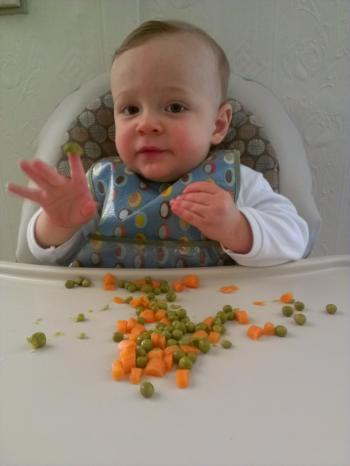 children fussy eaters