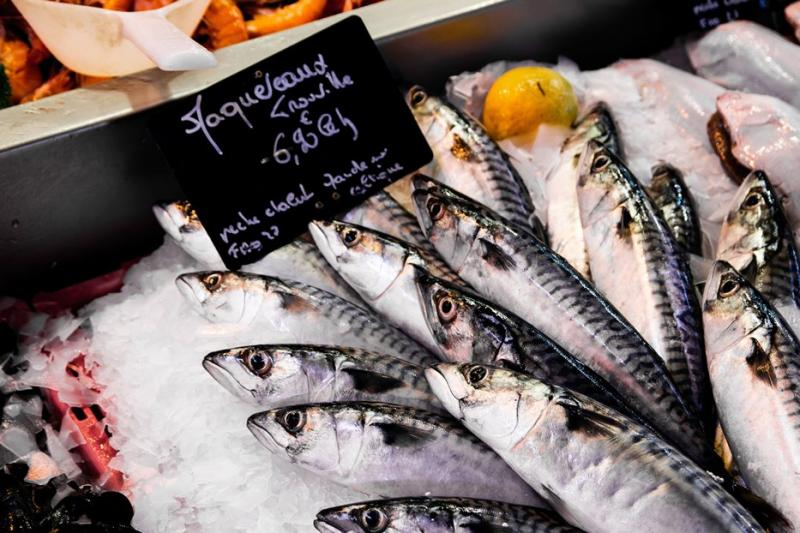 Oily fish for brain and eyes